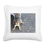 squirrel_nc.jpg Square Canvas Pillow