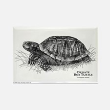 Ornate Box Turtle Rectangle Magnet
