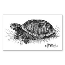Ornate Box Turtle Rectangle Decal