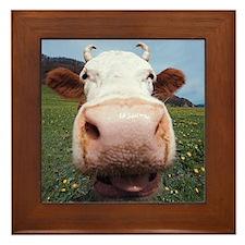 Cow Nose Framed Tile