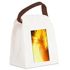 Unique Firestorm Canvas Lunch Bag