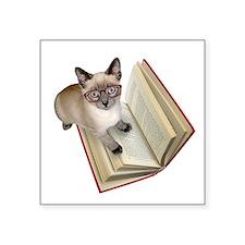 "Kitten Book Square Sticker 3"" x 3"""