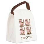 I Love Cats Canvas Lunch Bag