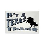 Texas Rectangle Magnet