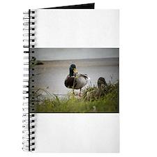 2 Ducks Journal