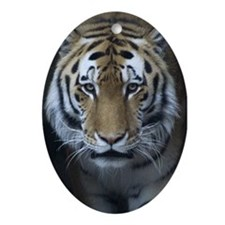 Tiger Face Oval Ornament