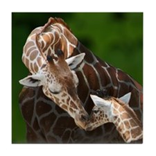 Giraffe Mom and Baby Tile Coaster