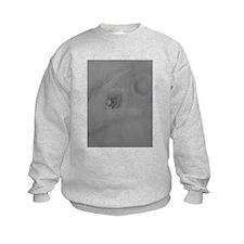 Levitating Sphere Sweatshirt