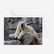 Polar Bear Roaring Greeting Cards (Pk of 20)
