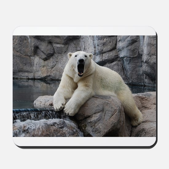 Polar Bear Roaring Mousepad