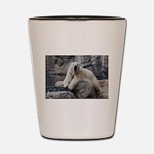 Polar Bear Roaring Shot Glass