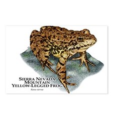 Sierra Nevada Yellow-legged Frog Postcards (Packag