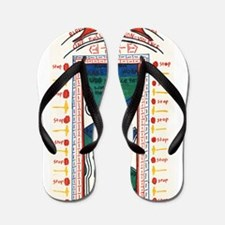 4.jpg Flip Flops