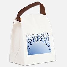 00438348.jpg Canvas Lunch Bag