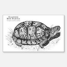 Eastern Box Turtle Rectangle Decal