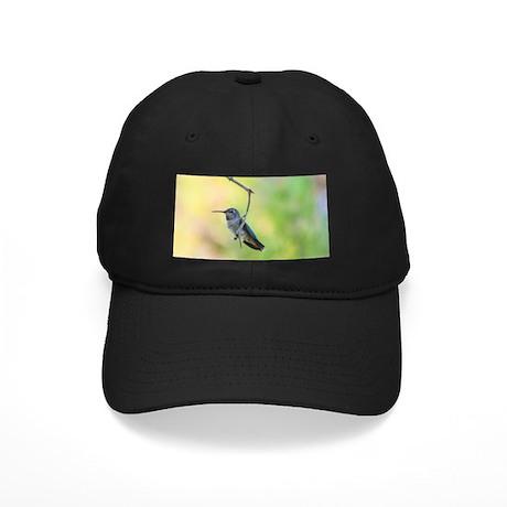 Hummingbird on green Black Cap