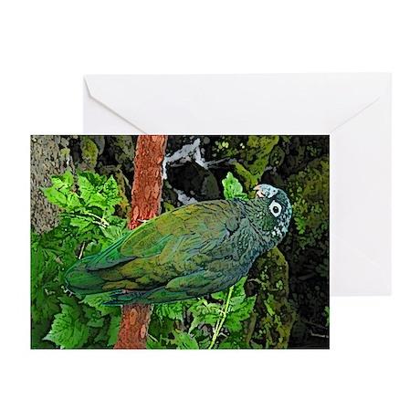 Pionus Art Greeting Cards (Pk of 10)