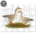 Tufted Buff Geese Puzzle