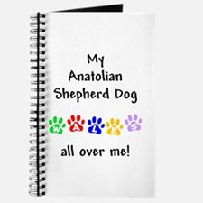 Anatolian Shepherd Walks Journal