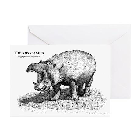 Hippopotamus Greeting Cards (Pk of 10)
