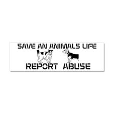 Stop Animal Abuse magnet