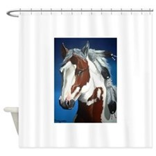Native Paint Horse Shower Curtain
