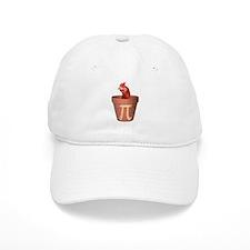 Chicken Pot Pi Baseball Cap