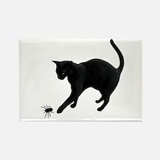 Black Cat Spider Rectangle Magnet