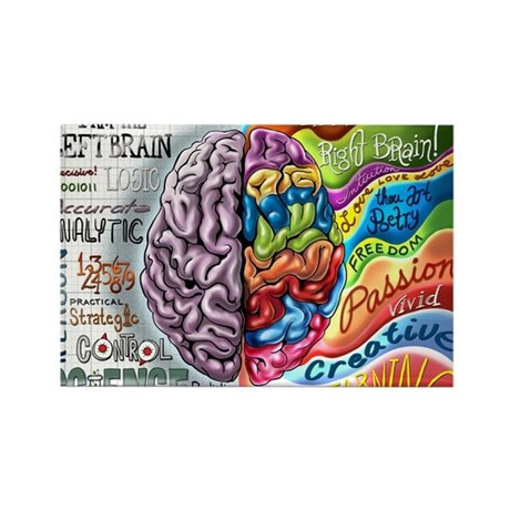 Left Brain Right Brain Cartoon Poster Rectangle Ma