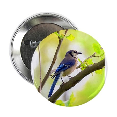"""Blue Jay 2.25"""" Button"""