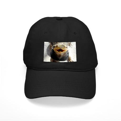 Bearded Dragon Black Cap
