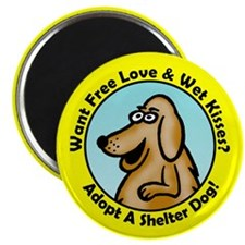 """Yellow Lab 2.25"""" Magnet (10 pack)"""