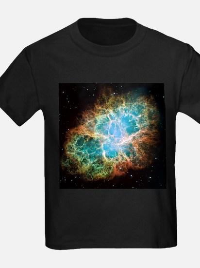 Crab Nebula (High Res) T