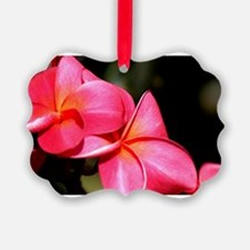 Hawaii plumeria - Horizontal.jpg Ornament