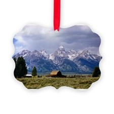 Jul11.jpg Ornament