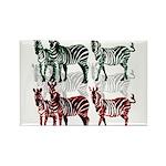 OYOOS Zebra design Rectangle Magnet (100 pack)