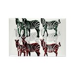 OYOOS Zebra design Rectangle Magnet