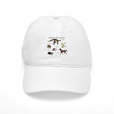 New Jersey State Animals Baseball Cap