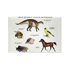 New Jersey State Animals Rectangle Magnet