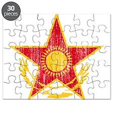 Kazakhstan Roundel Puzzle