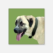 "ANATOLIAN shepherd.png Square Sticker 3"" x 3"""
