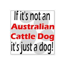 "not australian cattle.png Square Sticker 3"" x 3"""