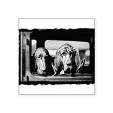 bloodhound-1embossed border sq.jpg Square Sticker