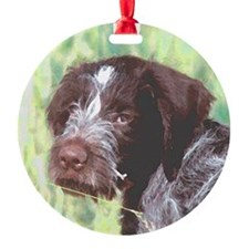 german wirehaired sq 2 watercolor.png Ornament