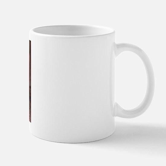 Frederic Edwin Church Aurora Borealis Mug