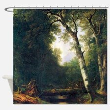 A creek in the woods Shower Curtain