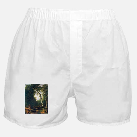 A creek in the woods Boxer Shorts