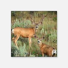 """Mule deer velvet Square Sticker 3"""" x 3"""""""