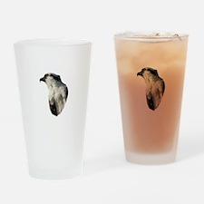 Focused Osprey Drinking Glass
