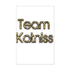 August 22 2012 Team katniss 0.png Posters